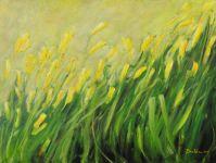 Żółte kwiaty na łące, olej, płótno, 60x80 2015